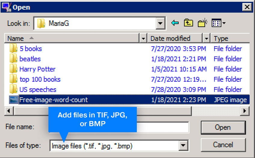 You can add TIF, JPG, or BMP to process and count words later