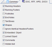 Anycount DOC format settings screenshot